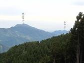 野馬瞰山森林步道、榛山步道、榛山:IMG_7235.jpg