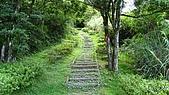 獅公髻尾山:IMG_8063.jpg