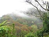 雪見、東洗水山:IMG_3071.jpg