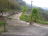 小烏來登北插天山:IMG_3355.jpg
