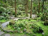福山植物園:IMG_6415.jpg