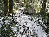 雪蓋復興尖、冰封塔曼山:IMG_2445.jpg