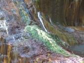 向陽、三叉、嘉明湖、栗松野溪溫泉---DAY 3:IMG_1701.jpg