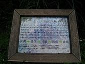 獅公髻尾山:IMG_8141.jpg