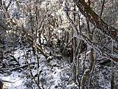雪蓋復興尖、冰封塔曼山:IMG_2519.jpg