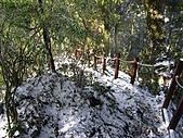 雪蓋復興尖、冰封塔曼山:IMG_2446.jpg