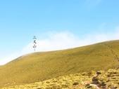 向陽、三叉、嘉明湖、栗松野溪溫泉---DAY 2:IMG_1522.jpg