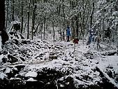 北插雪景:P3050081