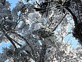 雪蓋復興尖、冰封塔曼山:IMG_2542.jpg