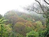 雪見、東洗水山:IMG_3072.jpg