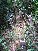鳶尾山、鳶山東峰、福德坑山、鳶山:IMG_4718.jpg