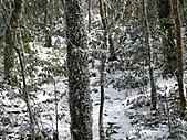 雪蓋復興尖、冰封塔曼山:IMG_2497.jpg