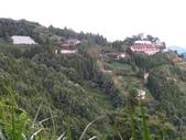 野馬瞰山森林步道、榛山步道、榛山:IMG_7237.jpg