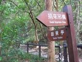 谷關七雄之四~波津加山:IMG_8539.jpg