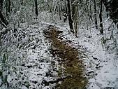 北插雪景:P3050070