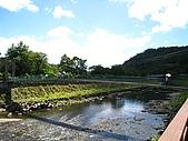 獅公髻尾山:IMG_8142.jpg