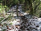 雪蓋復興尖、冰封塔曼山:IMG_2432.jpg