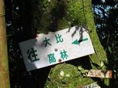 新竹五峰郷大窩山、鳥嘴山:IMG_7748.jpg