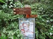 東勢格古道、臭頭山:IMG_6899.jpg
