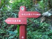 谷關七雄之六~白毛山:IMG_8628.jpg