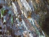 向陽、三叉、嘉明湖、栗松野溪溫泉---DAY 3:IMG_1702.jpg