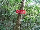 小烏來登赫威山、赫威前峰、木屋遺址、赫威神木群:IMG_5037.jpg