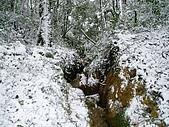 北插雪景:P3050066