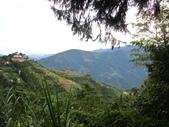 野馬瞰山森林步道、榛山步道、榛山:IMG_7238.jpg