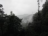 北宜路、銀河洞越嶺待老坑山、杏花林、貓纜、茶山古道下政大:IMG_2834.jpg