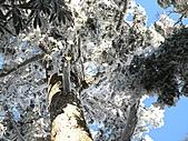 雪蓋復興尖、冰封塔曼山:IMG_2545.jpg