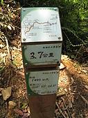 水社大山:IMG_2534.jpg