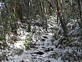 雪蓋復興尖、冰封塔曼山:IMG_2498.jpg