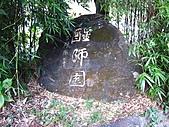 武陵楓正紅:IMG_1455.jpg