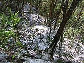 雪蓋復興尖、冰封塔曼山:IMG_2434.jpg