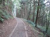 特富野古道:IMG_6508.jpg
