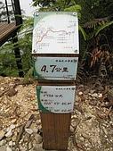 水社大山:IMG_2549.jpg