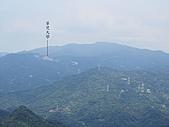 東亞最美麗的百合:IMG_0805.jpg
