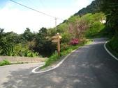 桂山路上大桶山:IMG_1789.jpg