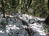 雪蓋復興尖、冰封塔曼山:IMG_2452.jpg