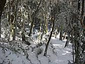雪蓋復興尖、冰封塔曼山:IMG_2547.jpg