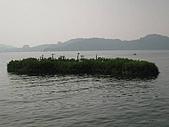 水社大山:IMG_2624.jpg