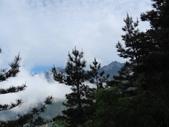 向陽、三叉、嘉明湖、栗松野溪溫泉---DAY 1:IMG_1387.jpg