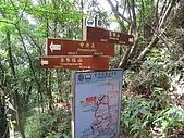 平溪中央尖、臭頭山:IMG_3391.jpg
