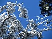 雪蓋復興尖、冰封塔曼山:IMG_2548.jpg
