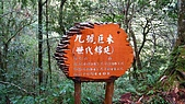 拉拉山遊樂區:IMG_1527.jpg
