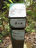 水社大山:IMG_2535.jpg