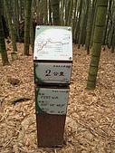 水社大山:IMG_2513.jpg