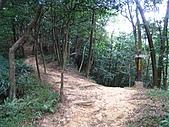 鳶尾山、鳶山東峰、福德坑山、鳶山:IMG_4727.jpg