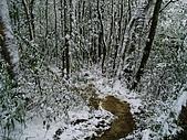 北插雪景:P3050071
