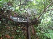三貂嶺瀑布群、中坑古道、柴寮古道、侯硐:IMG_2176.jpg